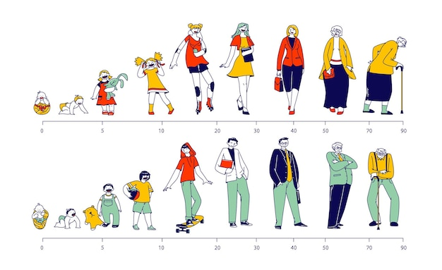 Male and female characters life cycle. man and woman in different ages baby, child, teenager, adult and elderly person in row, generation of people and stages of growing up. linear vector illustration