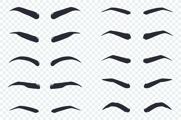 Male and female eyebrows of different shapes