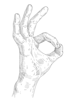 Male hand showing symbol okay. vintage vector monochrome gray hatching illustration isolated on white background. hand drawn design element for t-shirt