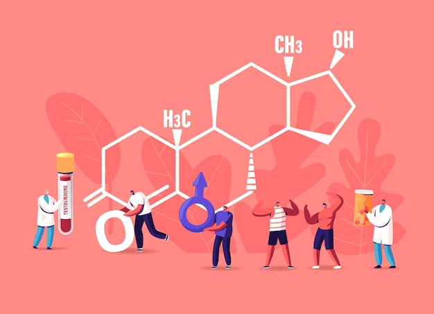 男性の健康の概念。巨大なテストステロンフォーミュラで血液検査フラスコを持っている小さなキャラクターの患者と医師。男は火星のサインを保持します。ホルモン、診断および治療。漫画の人々のベクトル図