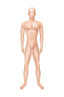 Male mannequin, manikin for clothing store.