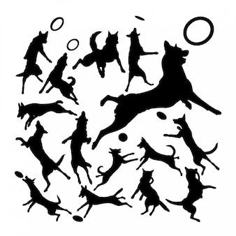マリノアベルギー羊飼い犬動物シルエット