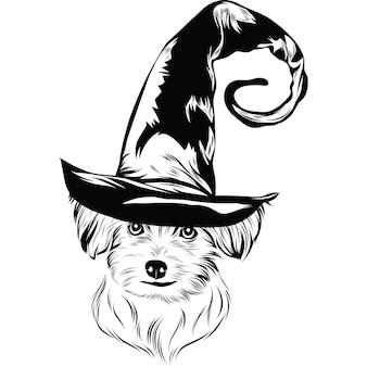 Мальтийская собака в шляпе ведьмы на хэллоуин