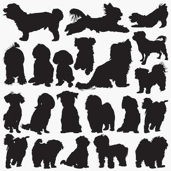Maltese dog silhouettes