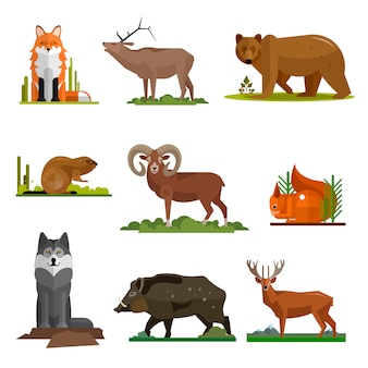 Mammal animals vector set in flat style design. fox, bear, wolf, dear.