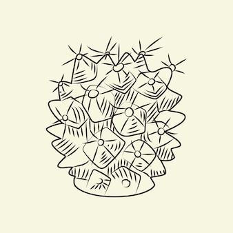 Mammillaria 선인장 밝은 배경에 고립입니다. 야생 선인장 밑그림입니다. 빈티지 스타일 조각. 벡터 일러스트 레이 션.