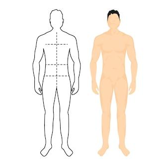 남자 해부학 실루엣 크기입니다. 인체 전체 측정 남성 그림 허리, 가슴 차트 템플릿.
