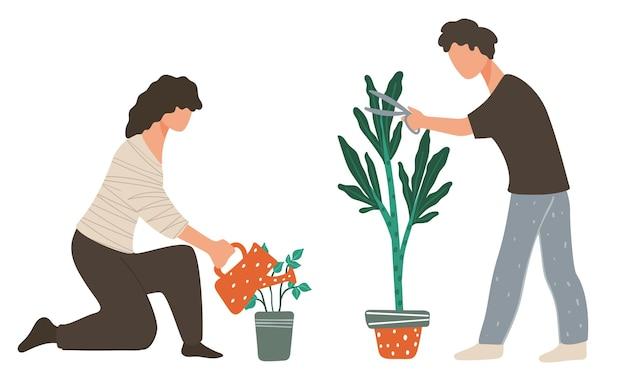 남자와 여자는 집 식물을 돌보고, 넓은 잎을 자르고, 식물에 물을 주어 자라게 합니다. 냄비에 녹색 식물이 있는 가정, 오렌지 공장 또는 온실 작업자를 위한 장식용 단풍. 평면 스타일의 벡터