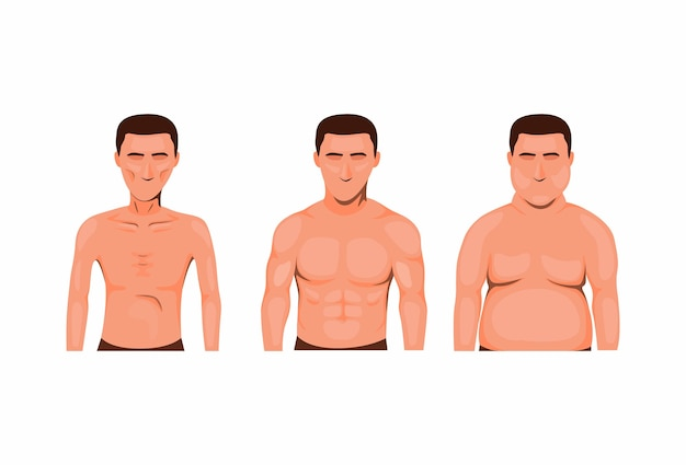 Man body type. skinny, fat and muscle. nutrition health symbol icon set concept in cartoon