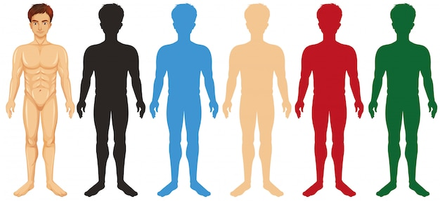 Man and different silhouette color bodies