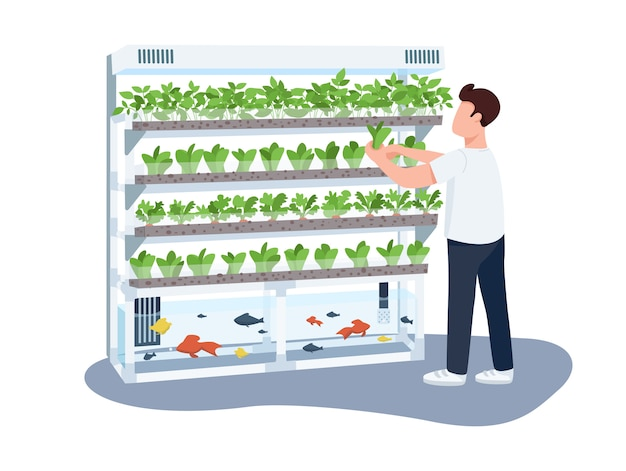 Man and domestic greenhouse, gardener flat color faceless character. plants and fishes care, greenery growing isolated cartoon illustration for web graphic design and animation