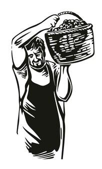 男はブドウ園でブドウを収穫します黒ヴィンテージベクトル彫刻イラスト