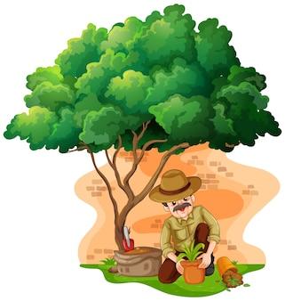 庭に植樹する男