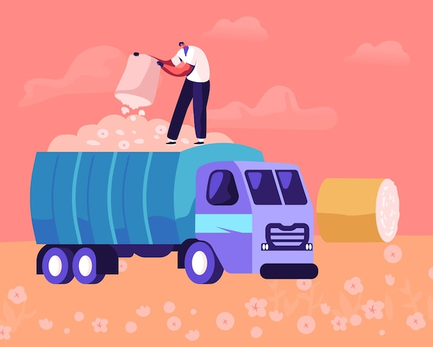 Man pouring ripe cotton flowers to harvesting industrial machine on field. cartoon flat illustration