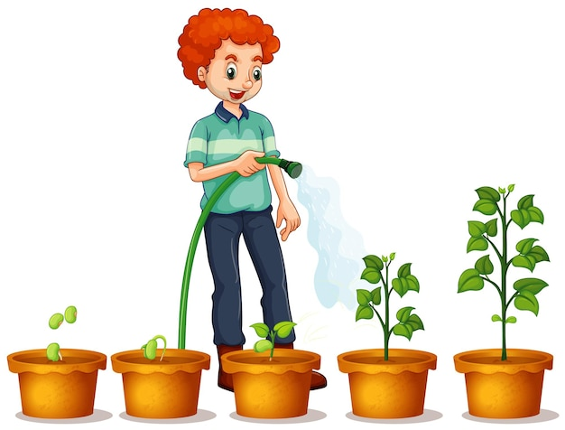 Uomo che innaffia le piante in giardino su sfondo bianco