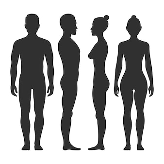 Man and woman vector silhouettes in front and side view. illustration of body male and female illust