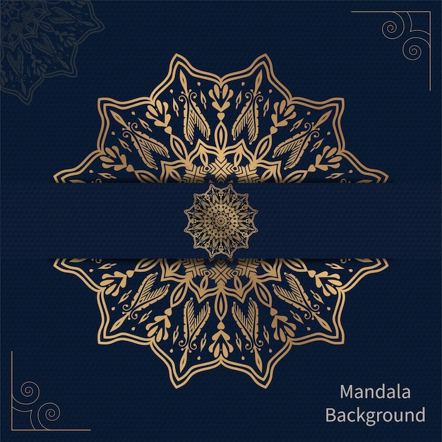 Mandala setting in freepik