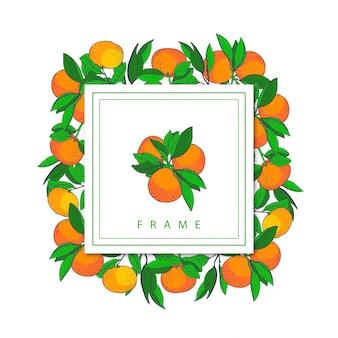 Mandarine handdrawn frame
