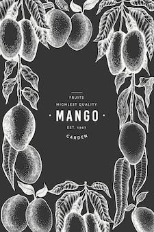 Mango design template. hand drawn vector tropic fruit illustration on chalk board. engraved style fruit. vintage exotic food.