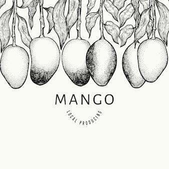 マンゴーのデザインテンプレートです。手描きの背景トロピカルフルーツイラスト。
