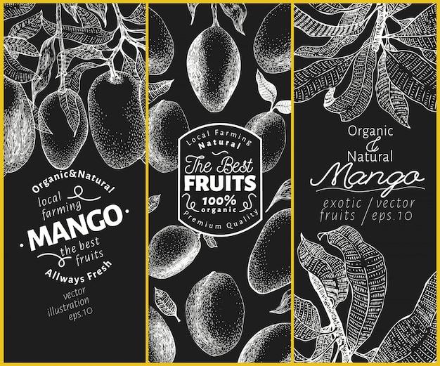 マンゴーフルーツバナーセット。チョークボードに描かれたベクターフルーツイラストを手します。レトロなエキゾチックな刻印スタイル。