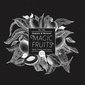 Mango fruit banner template.