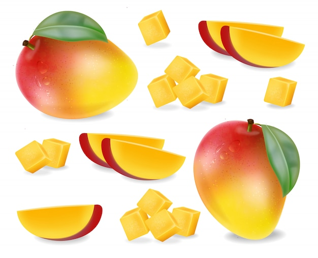 Mango fruit slices set