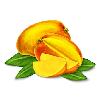 Mango isolated illustration