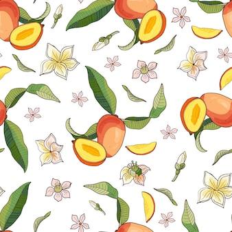 マンゴー。黄色と赤のトロピカルフルーツと白い背景の上の部分とのシームレスなパターン。明るい夏のイラスト。