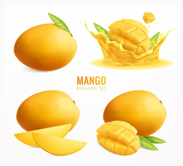Mango set realistic clipart isolated, whole ripe fruits with leaves and slices splash