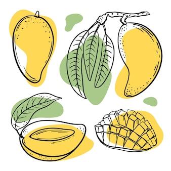 白い背景の図に黄色と緑の色のスプラッシュとマンゴーのスケッチ