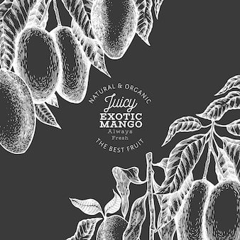 Mango template. hand drawn vector tropic fruit illustration on chalk board