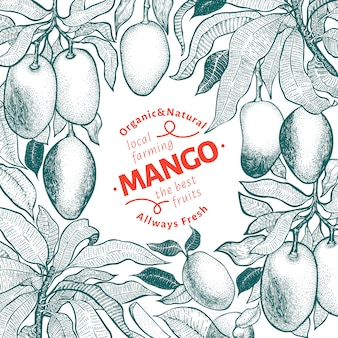 Mango tree vintage design template