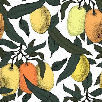 Mango tree vintage seamless pattern. botanical fruit background. engraved. retro illustration
