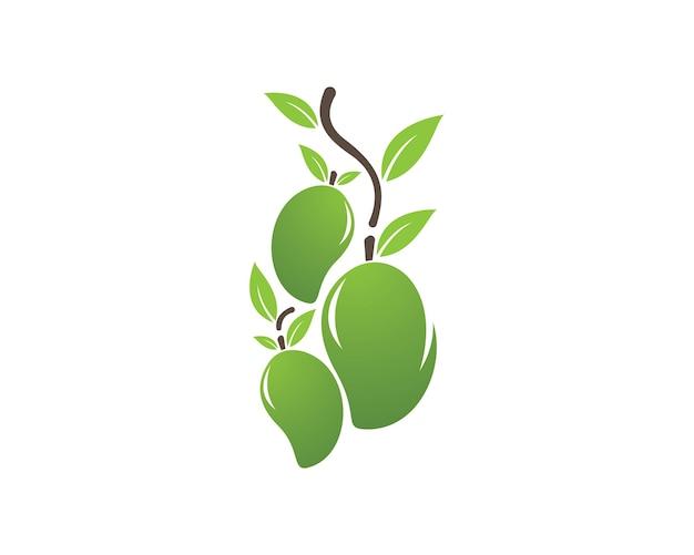 Mango vector logo.