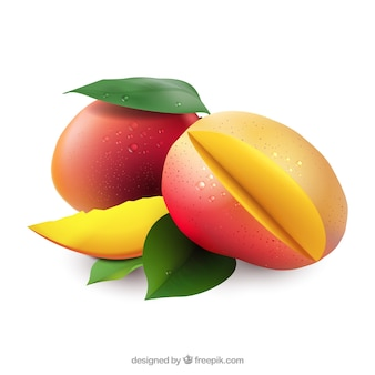 Mangoes in realistic style