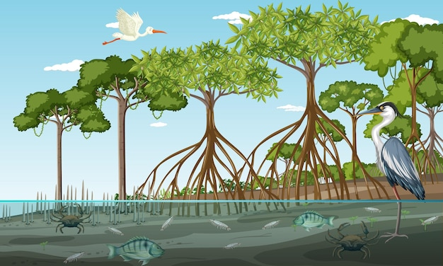 Сцена пейзажа мангрового леса в дневное время с множеством разных животных