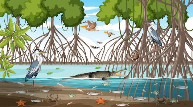 多くの異なる動物との昼間のマングローブの森の風景のシーン