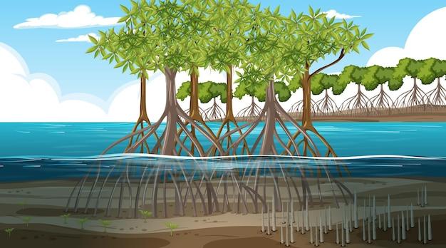 Сцена пейзажа мангрового леса в дневное время