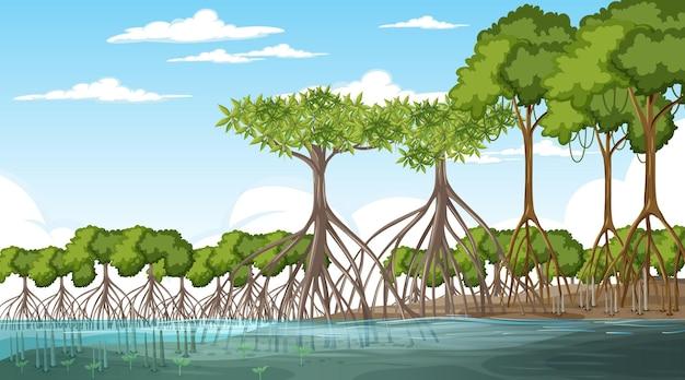 昼間のマングローブ林景観シーン