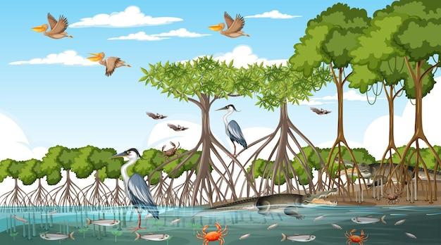 낮에 맹그로브 숲 풍경 장면