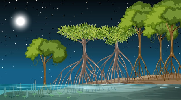 夜のマングローブの森の風景シーン