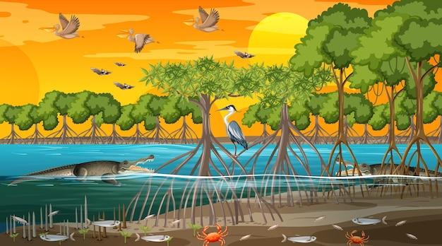 多くの異なる動物と日没時のマングローブの森の風景のシーン