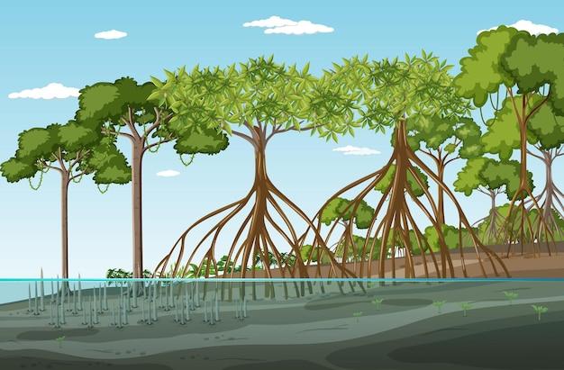 Scena del paesaggio della foresta di mangrovie di giorno