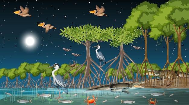Mangrove forest landscape scene at night with many different animals