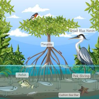 맹그로브 숲 장면과 레이블 이름이 있는 동물