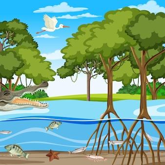 수중에서 동물과 함께 낮에 맹그로브 숲 장면