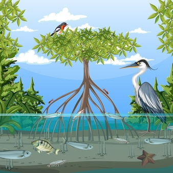 Сцена мангрового леса в дневное время с животными