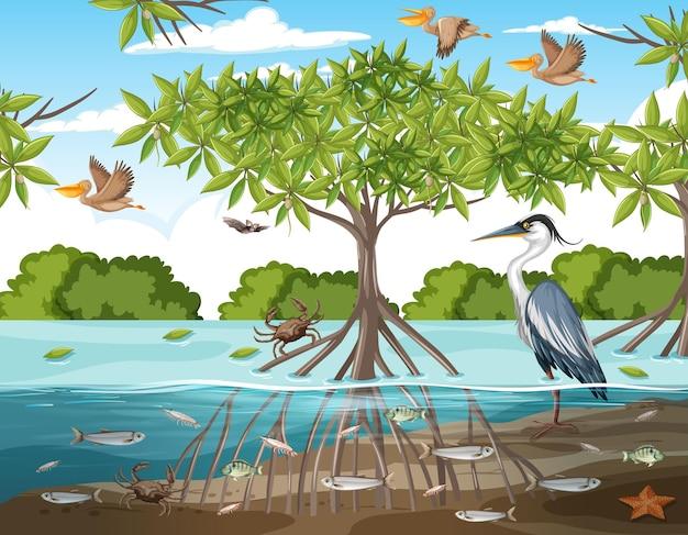 Сцена в мангровом лесу днем с животными