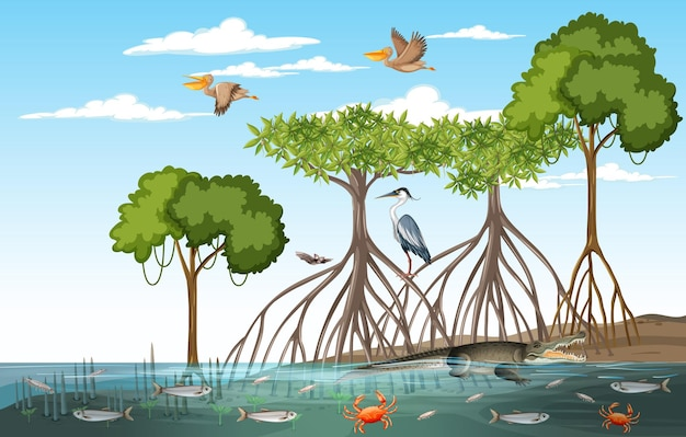 Mangrove forest scene at daytime with animals